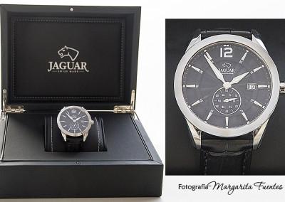 Jaguar caballero