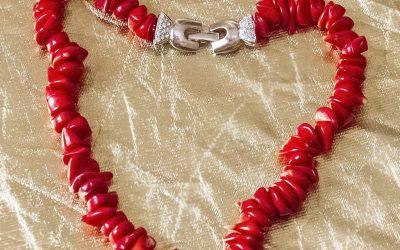 Coral rojo de rama